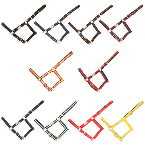 cabezada-cuadra-nylon-doble-colores