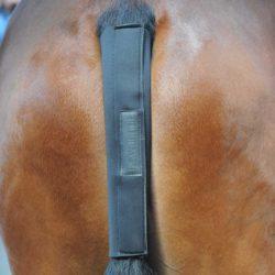 caballo-protector-cola