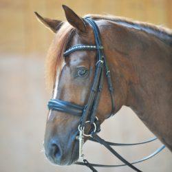 cabezada-caballo-cuero-fuerte