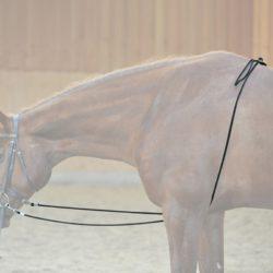 riendas-caballo-ho