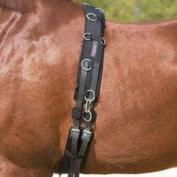 cinchuelo-caballo